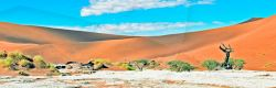 das tote Tal in red desert Namibia